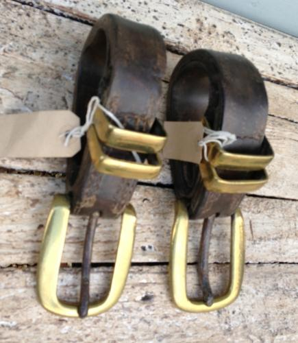 Shire Horse Strap Buckles