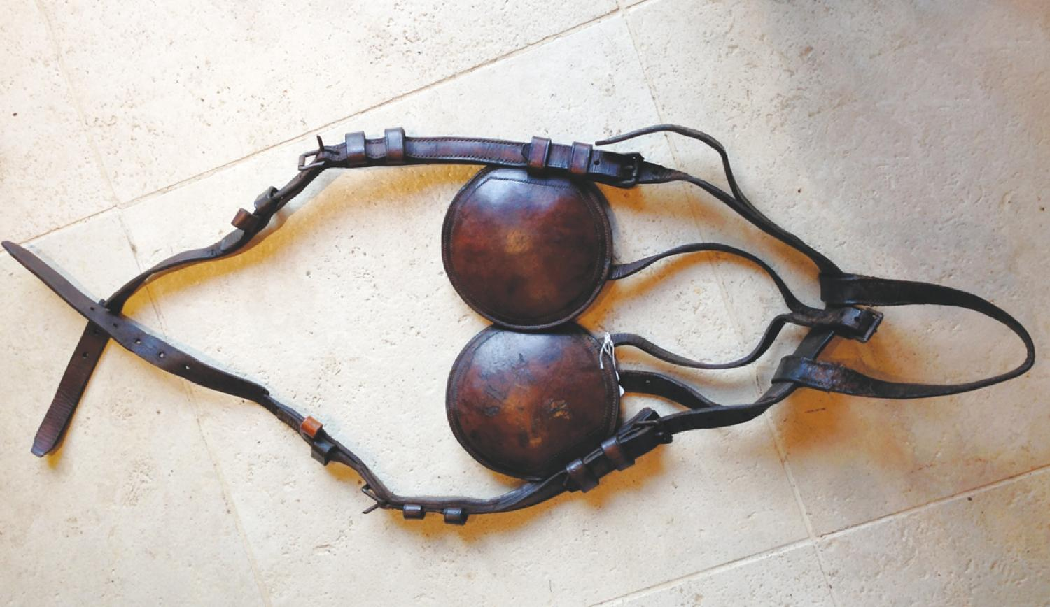 Quality Leather Horse Blinkers