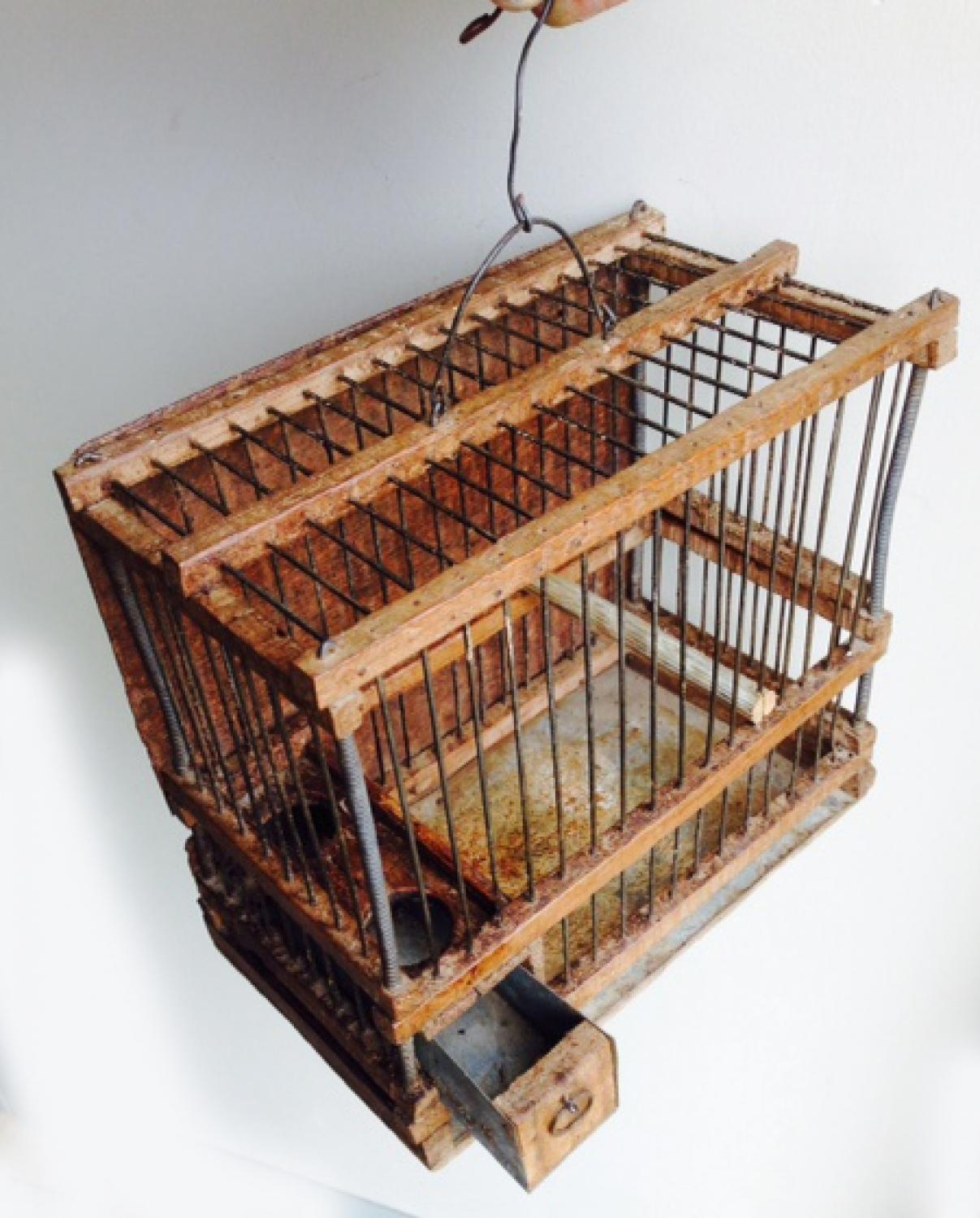 Antique Linnet Cage