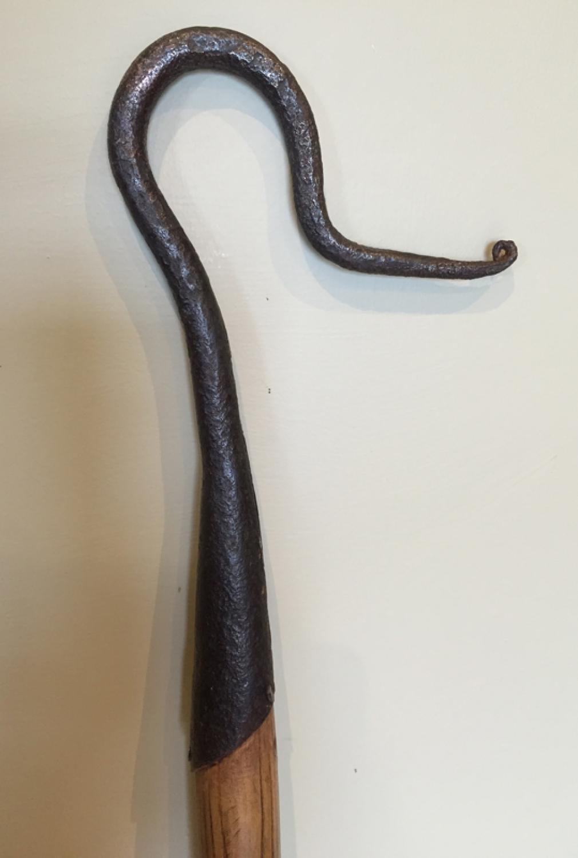 19th Cent Shepherd's Leg Crook