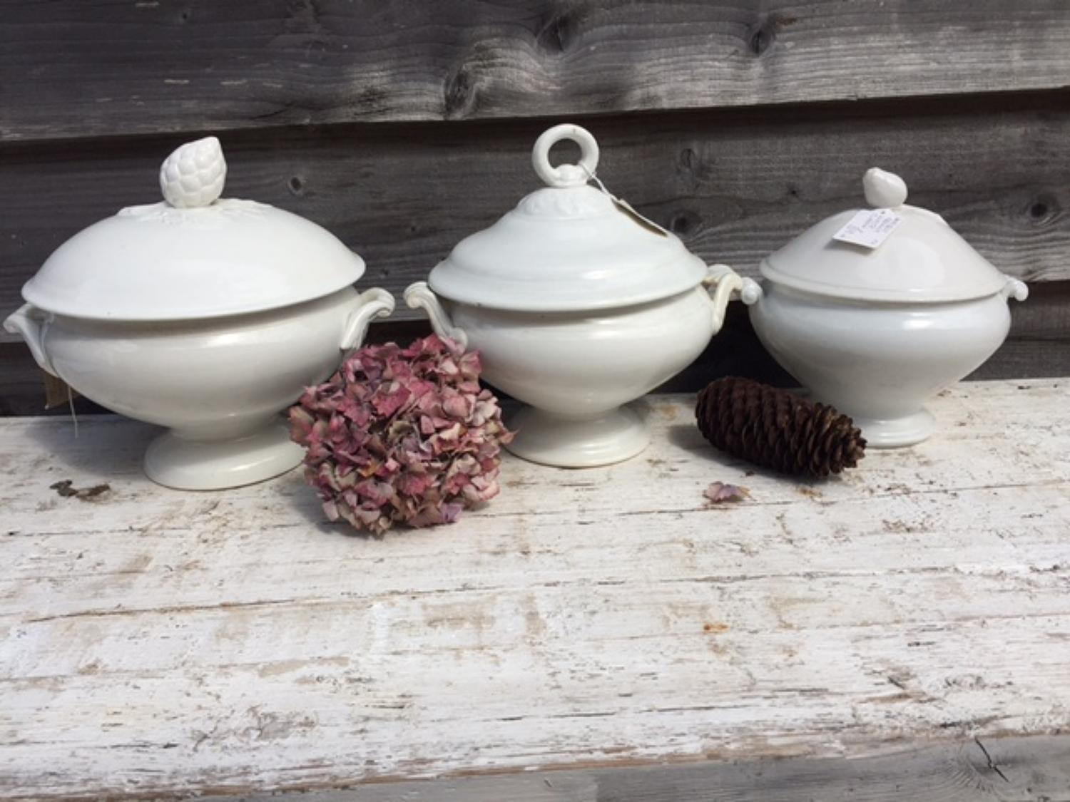 Antique White French Soup Tureens
