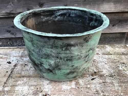 Victorian Copper 'Copper'