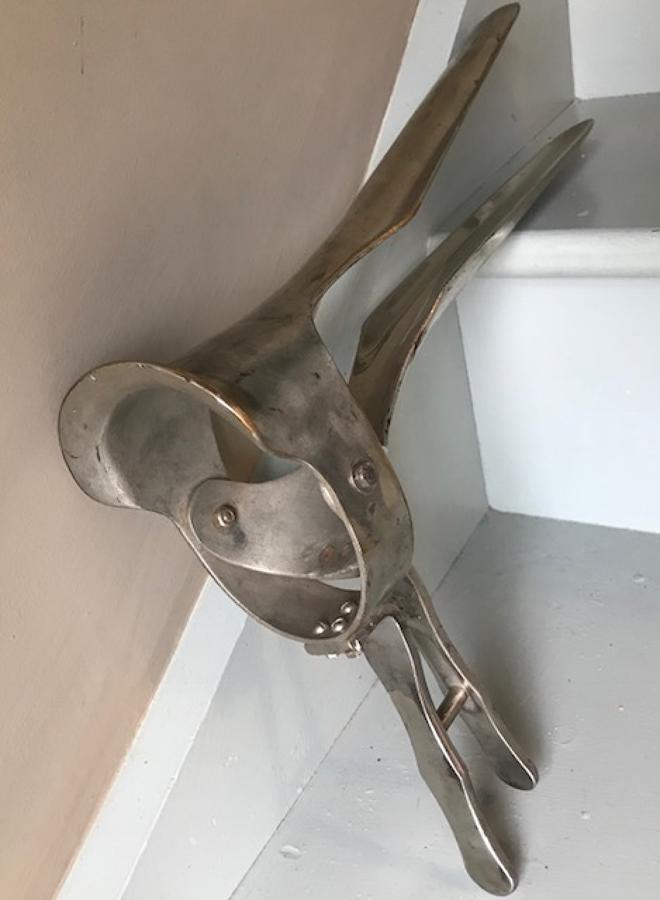 Veterinary Horse/Cow Speculum