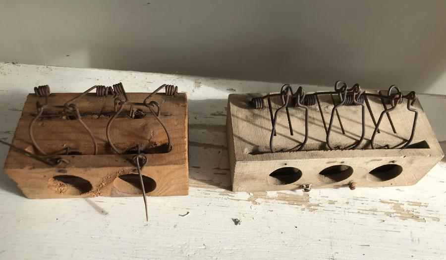 2 and 3 hole Mouse Traps