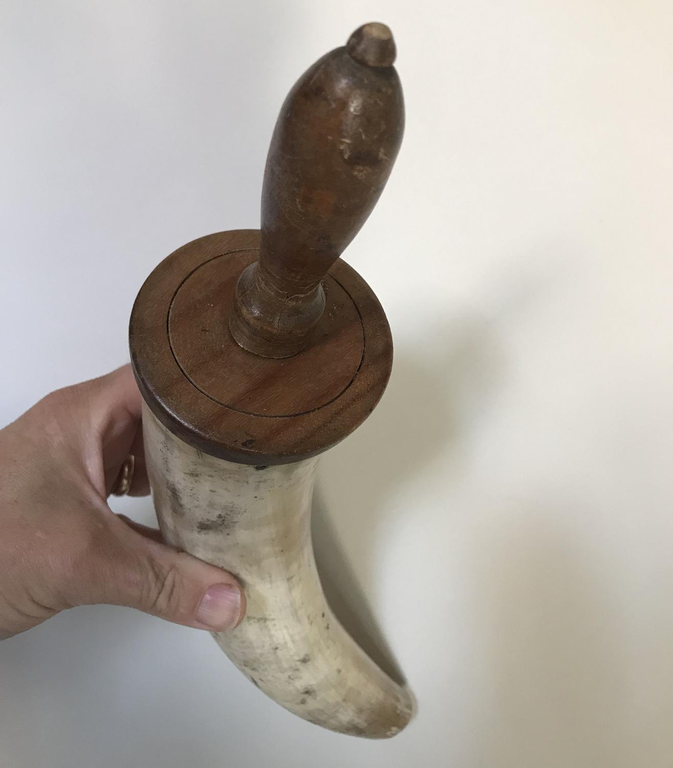 Quality Antique Drenching Horn