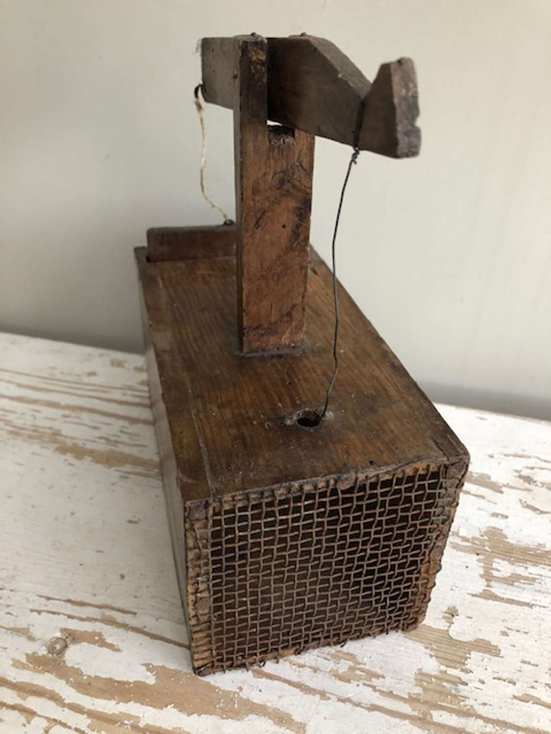 Simple Box Mouse Trap