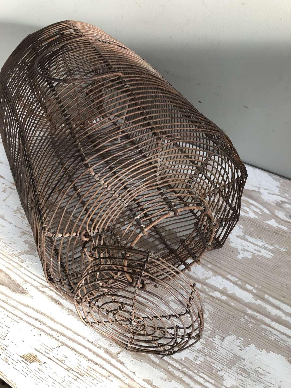 Antique Cage Traps