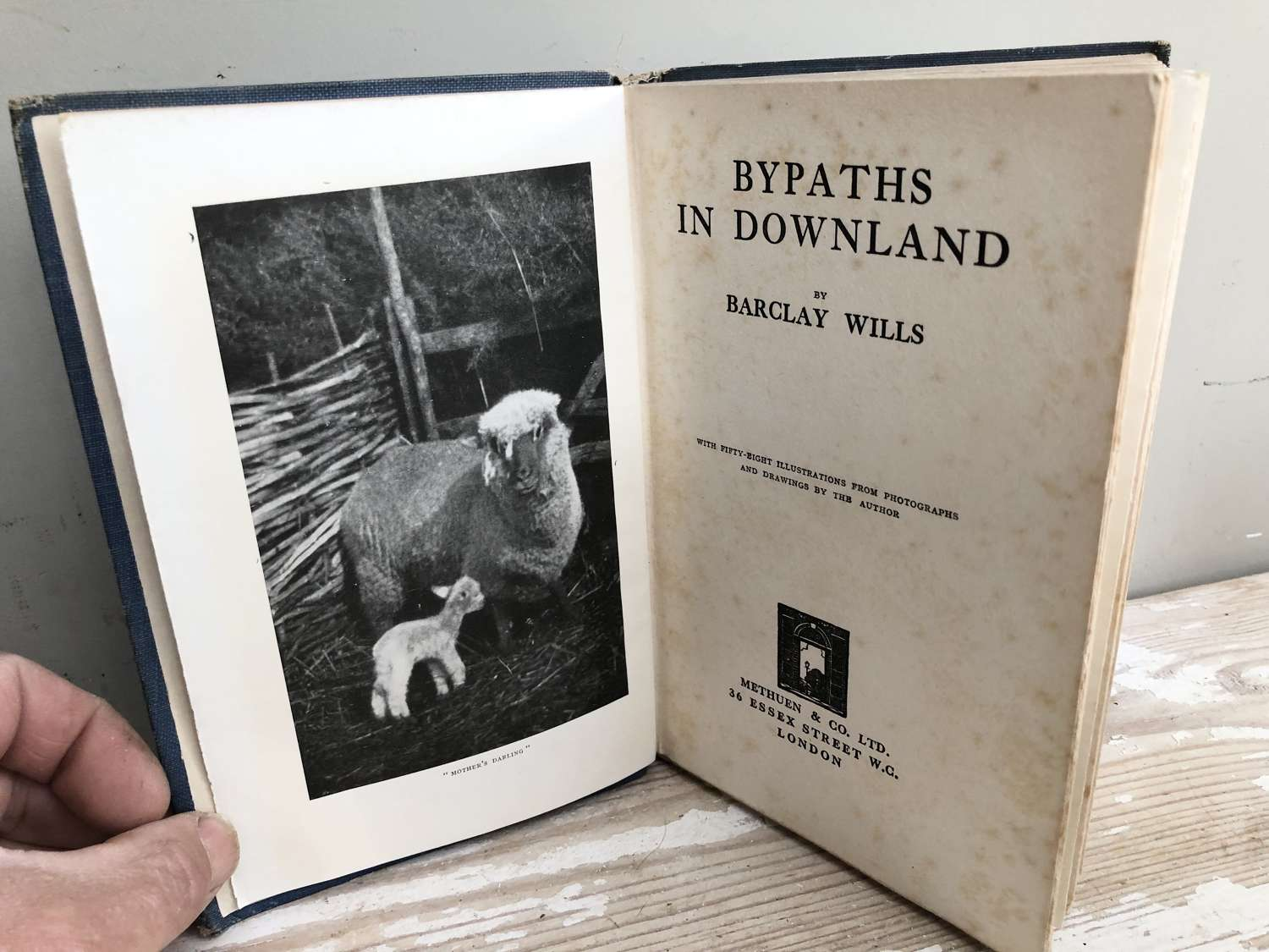 Bypaths in Downland by Barclay Wills