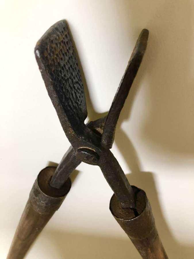 Victorian Garden Thistle Tongs